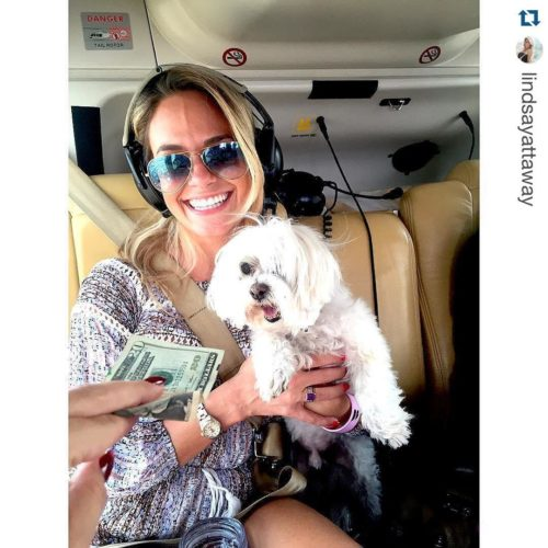 Helicopter ready, #DogsofBlade. Pampred pets take off for the Hamptons via Blade Helicopter. Photos courtesy Blade Helicopter