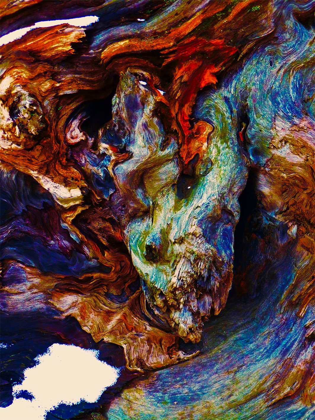 The swirling forces of Ted Barkhorn's Leviathan evoke a stormy Atlantic